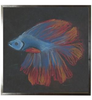 Pastel Fish on black