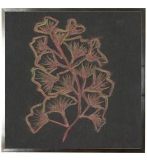 Pastel Coral on black