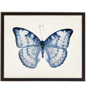 White and Navy Butterfly with Pink spots