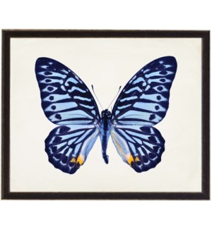 Blue butterfly with yellow spots