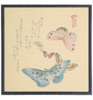 Asian butterfly C