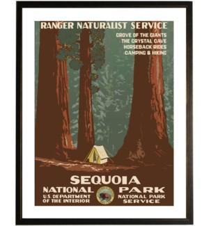 Sequoia travel poster