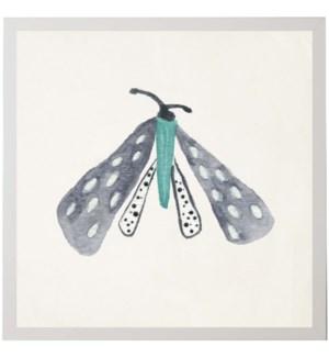 Watercolor gray and white polka dot moth