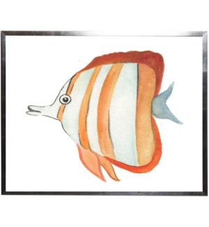 Orange striped fish