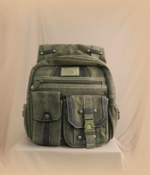 GREEN CANVAS BACKPACK/PURSE 15 in.