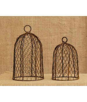 Rusty Bird Cage Domes