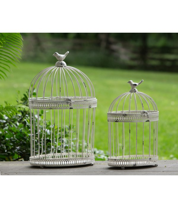 Bird Cages - Off-White