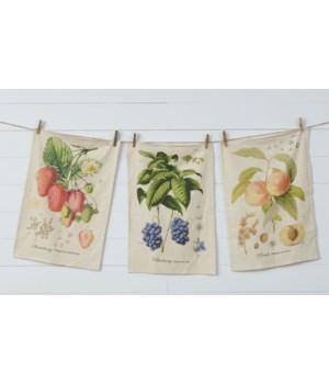 Freshly Picked - Tea Towels 26.5 H x 18.5 W in.