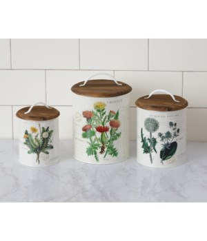 Botanical Tins - Thistle, Echinop, and Dandelion 9.75  x 6.5, 8.25 x 5.5, 7 x 4.5 in.