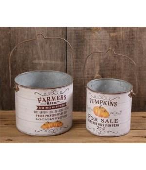 Buckets - Farmers Market, Pumpkins For Sale