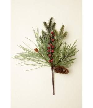 Pick - Frosted Evergreen Berries And Cones