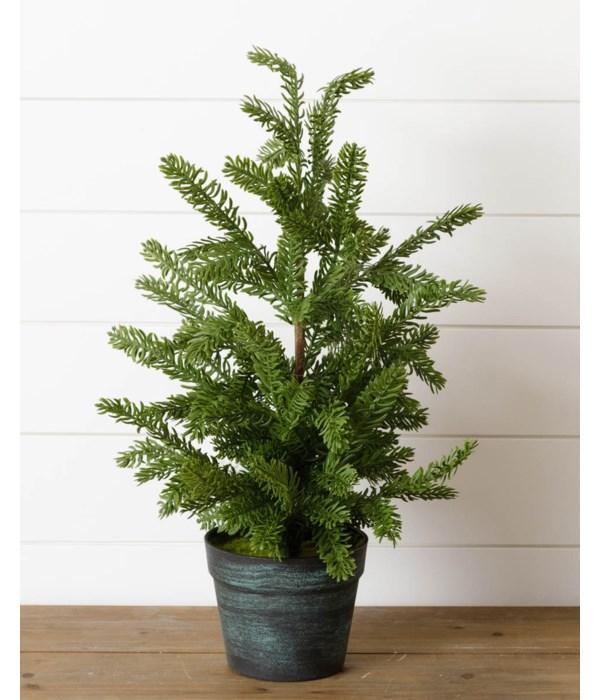 Tree In Pot - Real Feel Hew