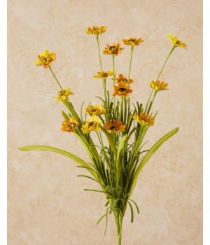Spray - Coreopsis Gold 18 in.