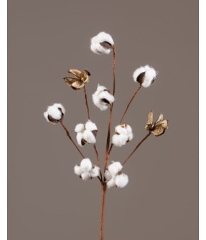 Pick - Twig Base With Cotton Pods