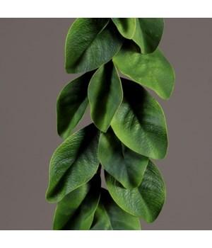 Garland - Magnolia Leaves