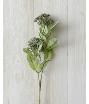 Branch - Seeded Foliage, Lavender