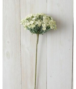 Branch - Allium, White