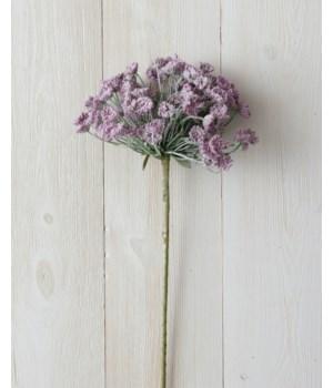 Branch - Allium, Lavender