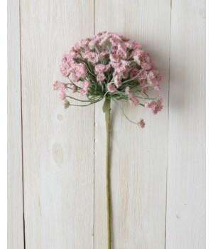 Branch - Allium, Pink