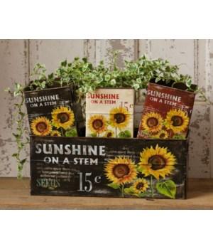 Sunshine On A Stem - Box Set