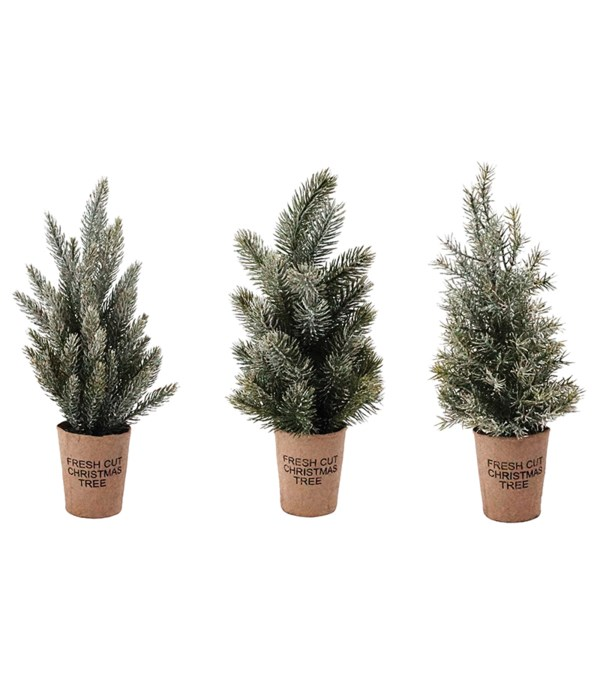 3 Asst Lg Frosted Tree w/Paper Cup