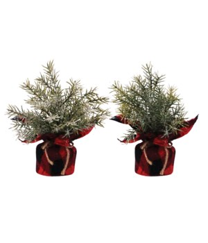 2 Asst Mini Pine Tree w/Red/Black Plaid Base