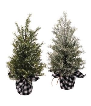 2 Asst Lg Pine Tree w/White/Black Plaid Base