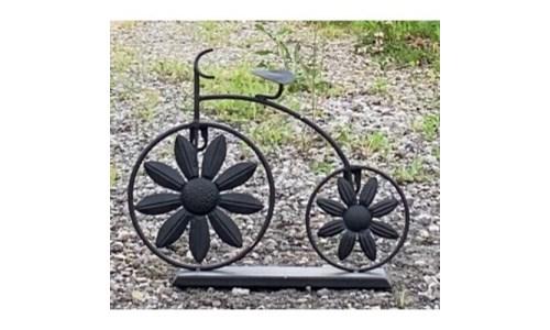 Big Wheel Flower Bicycle