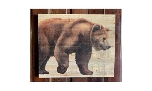 Bear Pallet Sign
