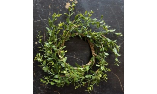 Baby Grass Candle Ring 5 in.