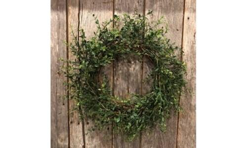 Boxwood Wreath 20 in.