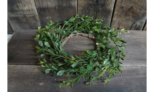 Boxwood Candle Ring 4.5 in.