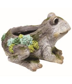 Decorative Planter-Frog