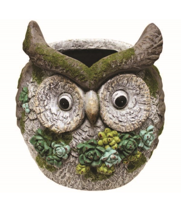 Decorative Planter-Hoot Owl
