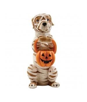 Trick Or Treat Mummy Dog