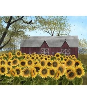 Sunshine Canvas 12 x 16 in.