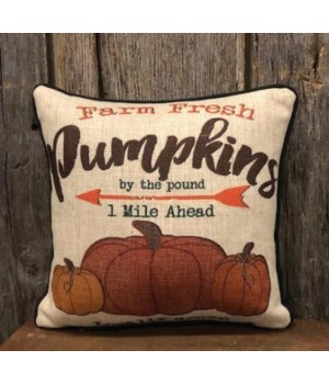 Pumpkin Pillow 12 in. x 12 in.
