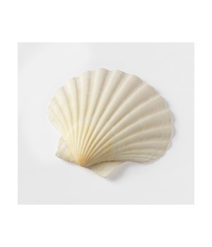 BAKING SHELL SET/6  8-8.5CM