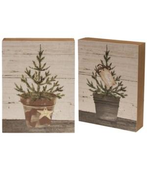 Merry Christmas Box Sign, 2 asstd.