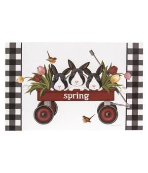Spring Wagon Box Sign 2 x 14 x 9 in.