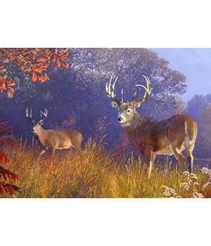 Puzzle in Tin 1000-Piece - Deer Scene 20 x 28 in.