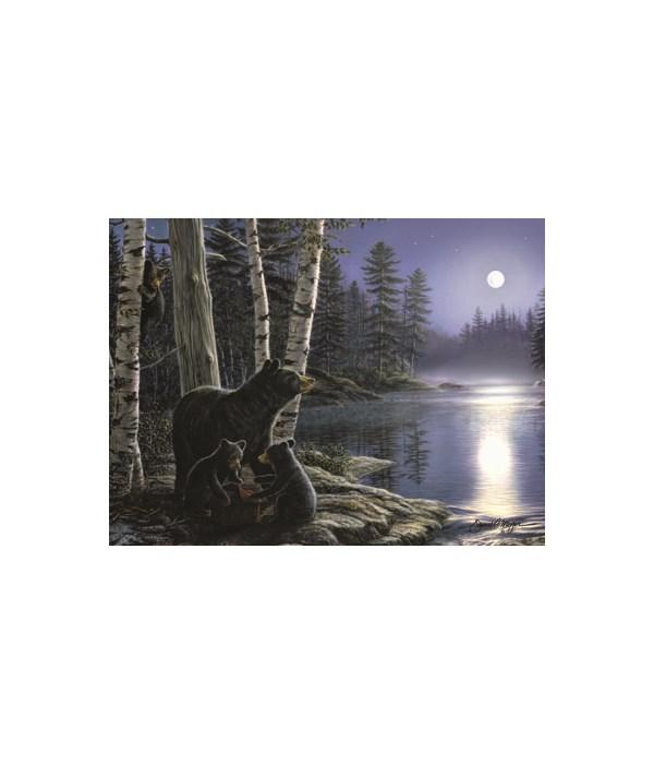 LED Art 16in x 12in - Moon-Bears