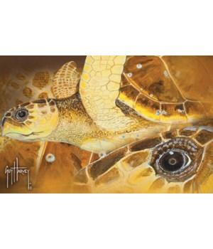 Door Mat Rubber 26in x 17in - Guy Harvey Sea Turtle