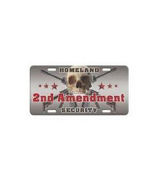 Vanity License Plate 12in x 6in - 2nd Amendment