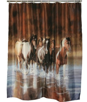 Shower Curtain - Rush Hour70 x 72 in.