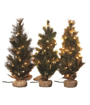 "24"" Pine Tree w/Light 3 Asst"