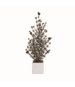 Lg Frosted Tree w/Birch Box