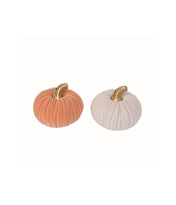 Lg Res Velvet Pumpkin 2 Asst