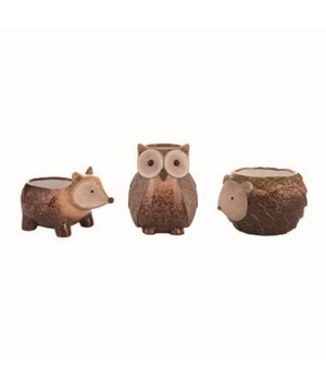 T/C Hedgehog/Owl/Fox Planter 3 Asst
