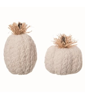Foam Cozy Pumpkins S/2